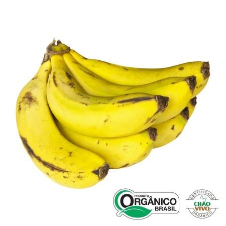 Banana Nanica ORGÂNICA QUILO